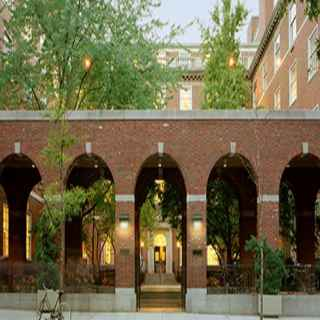 New York University School of Law