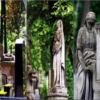 Личаковское кладбище