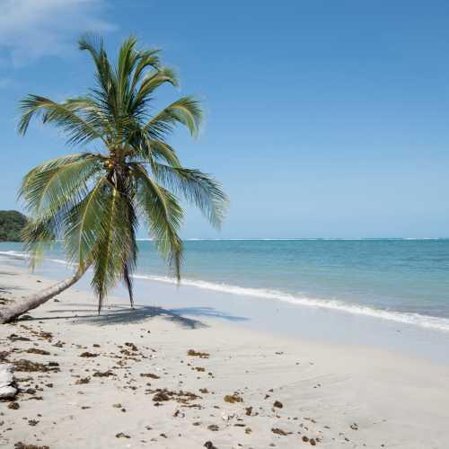 Почти идеальный пляж.