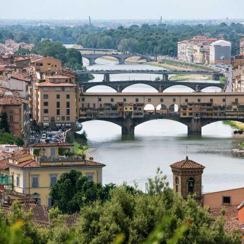 Мосты Флоренции сверху.