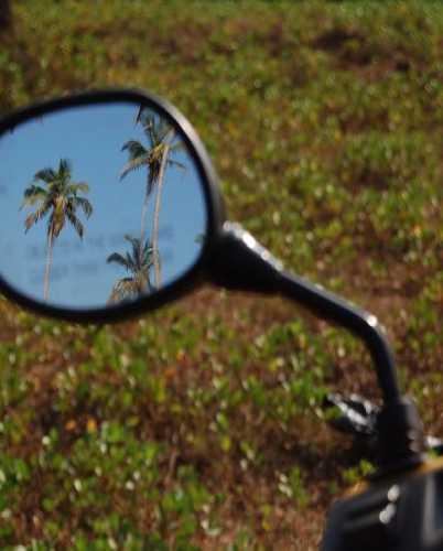 Типичный гоанская картинка в зеркале заднего вида.