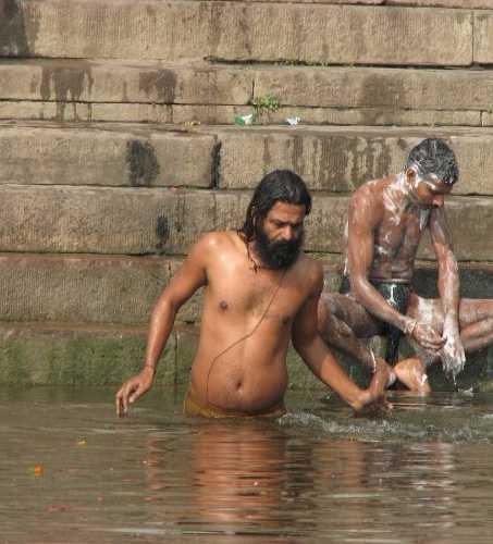 Местные индийские красавцы купаются в Ганге.