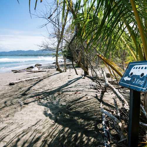 Типичный пляж Карибского побережья Коста-Рики.