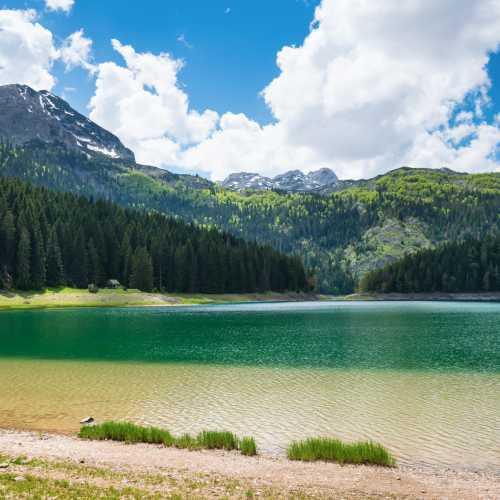 Удивительное Черное озеро и гора Медведь в национальном парке Дурмитор.