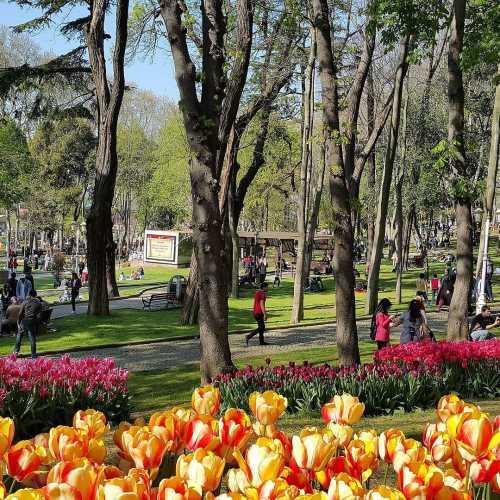 Emirgan Park, Turkey