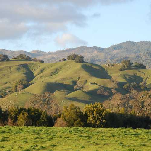 By nigelpepper - Rolling hills of the Napa valley, CC BY 2.0, https://commons.wikimedia.org/w/index.php?curid=8378030