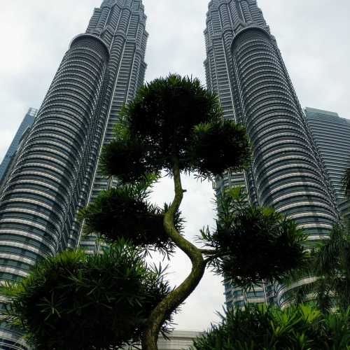 Знаменитые Petronas Towers — самый узнаваемый символ Куала Лумпура (Малайзия)