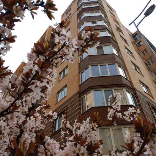 near «Smile Building» (Irpin, Ukraine)