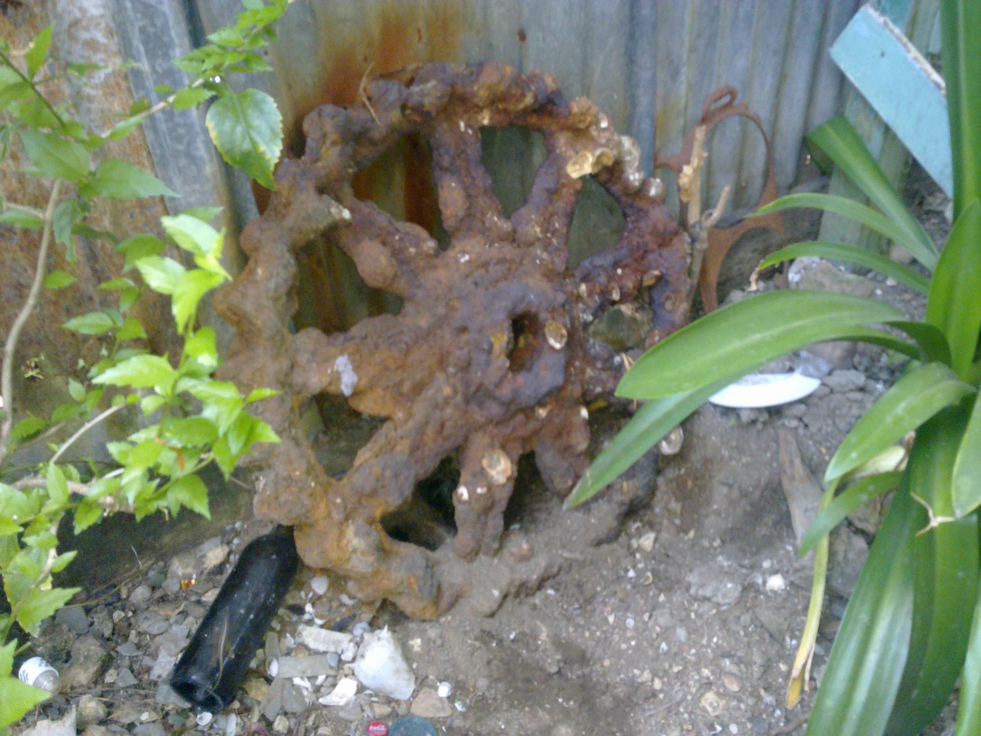 near Seaside Guest House (Belize City)
