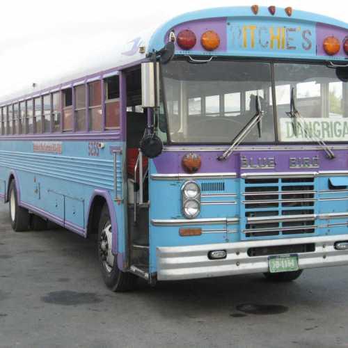 Belizean bus