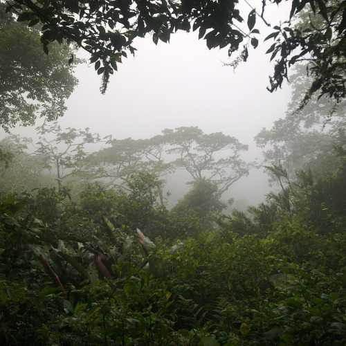 On the way to volcano Madera (Ometepe Island, Nicaragua)
