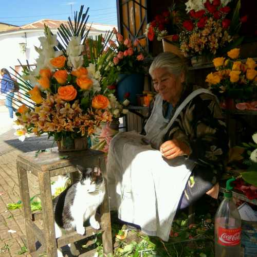 Florist-lady (Cochabamba, Bolivia)
