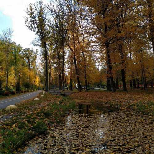 Бучанський міський парк (місто Буча, Україна)