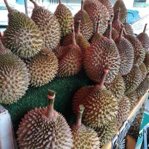 Durian (Malacca, Malaysia)