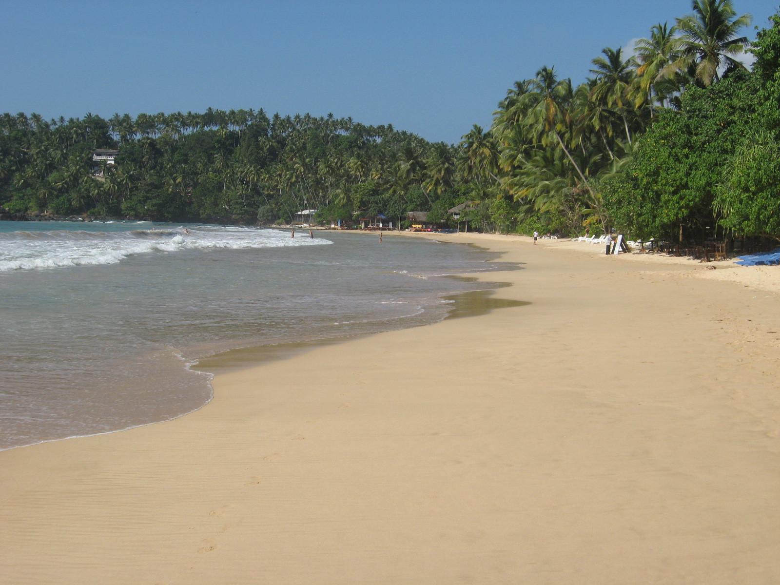 Mirissa beach (Sri Lanka)