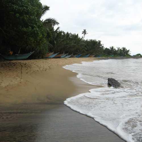 Mirissa, SriLanka