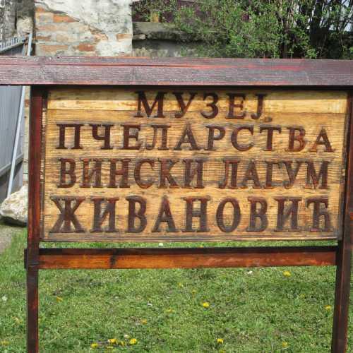 Музей мёда в Сремских Карловцах, Serbia