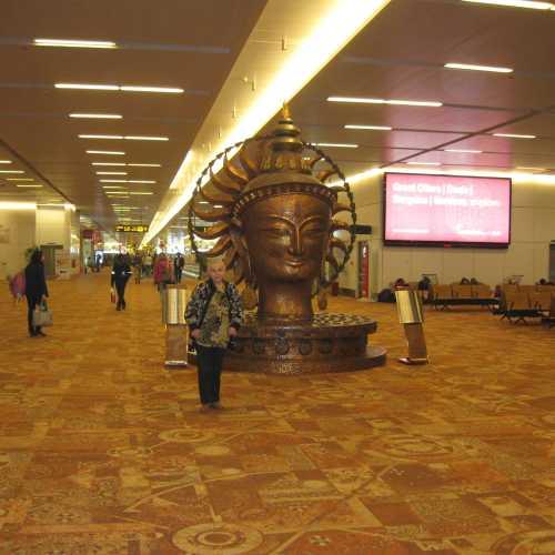 Международный аэропорт в Нью-Дели