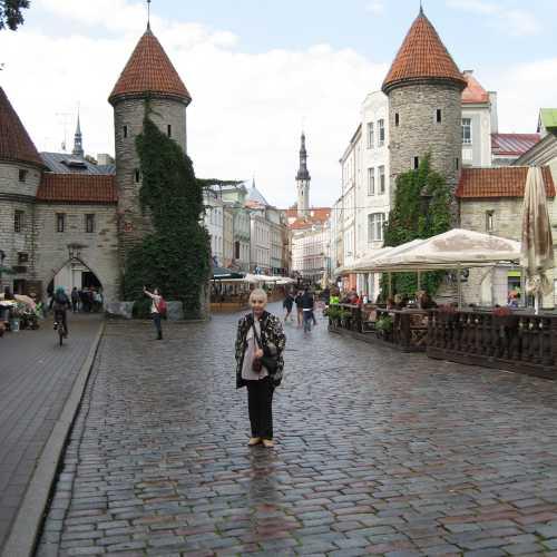 Вируские ворота, Estonia