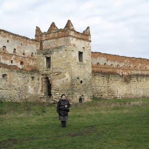 Старосельский замок, Украина
