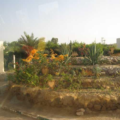 Египет. Таба, пограничный пункт пропуска
