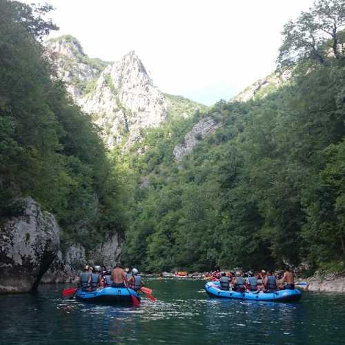 речка Тара, Montenegro