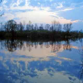 5 апреля 2008 г, Гомель, Беларусь