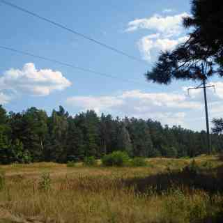 2 августа 2008 г., Гомель, Беларусь