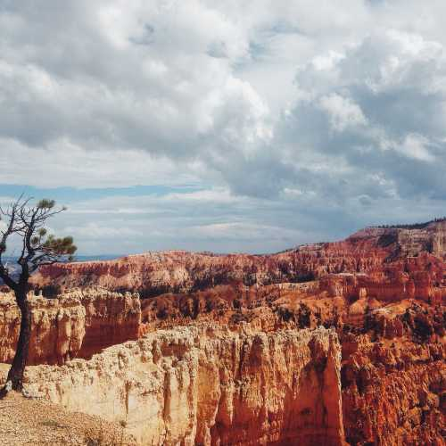 Bryce canyon, United States
