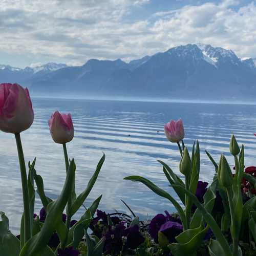 Start of Spring in Montreux