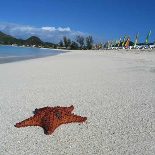 Jolly Beach, Antigua and Barbuda