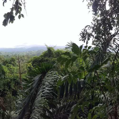 Veragua Rainforest Eco-Adventure, Costa Rica