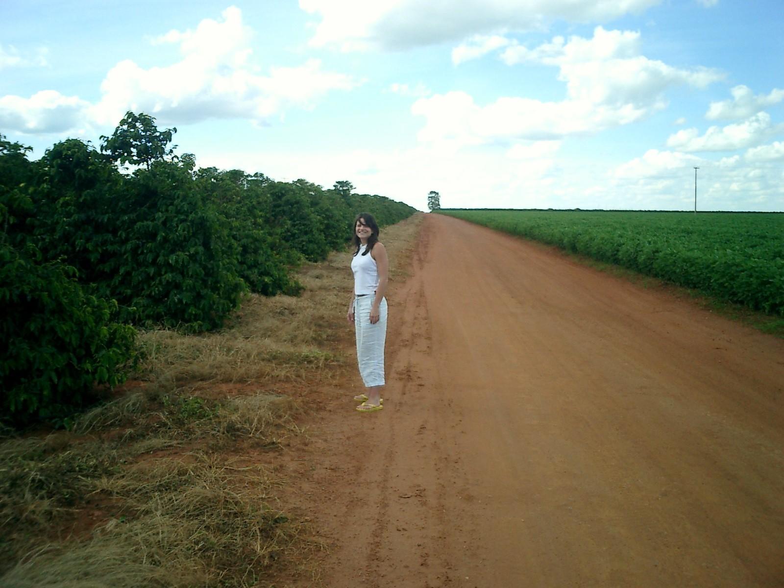 Road trip to Caldas Novas — Coffee Plantation — Cafe do Cerrado — Araguari — MG