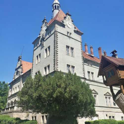 Замок Шенборнов, Украина