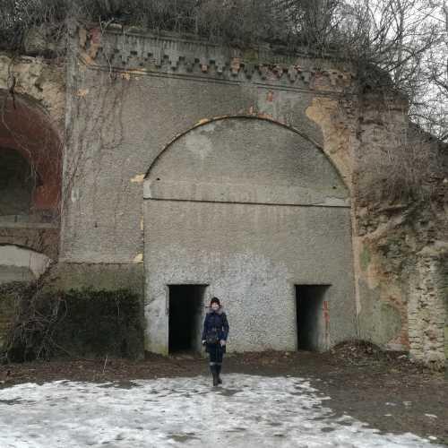 Таракановский форт, Украина