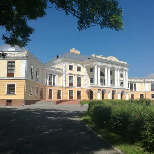 Вороновиця, Украина