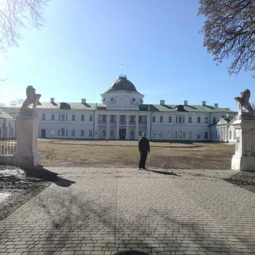 Дворец Тарновских, Украина