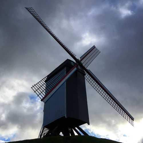 Отголоски Нидерландов, они тут везде. Близкие по духу страны.