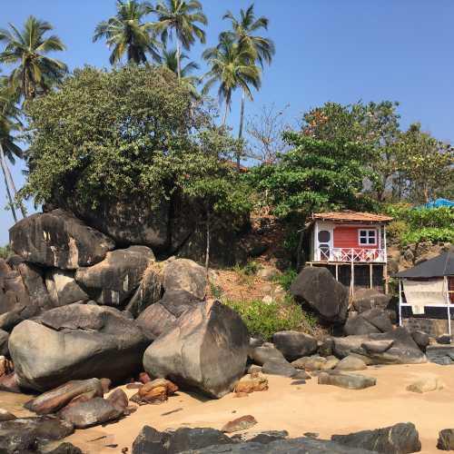Канкон, Индия