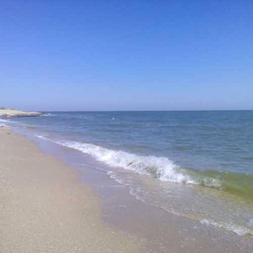 Zatoka, Ukraine