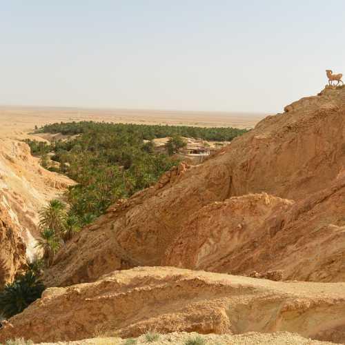 Оазис Шебика. Сахара.
