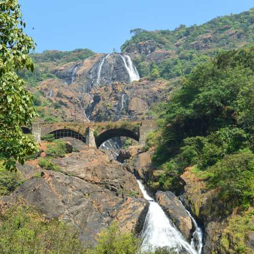 Dudhsagar Falls Trip Jeep Safari Booking Center, India