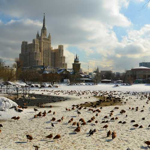 Вид из Московского зоопарка