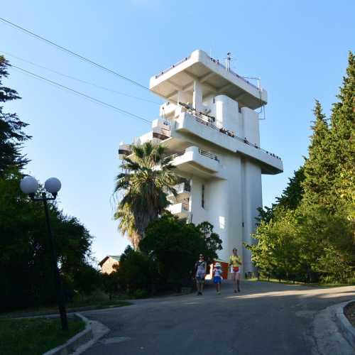"Cмотровая площадка парка ""Дендрарий, Russia"
