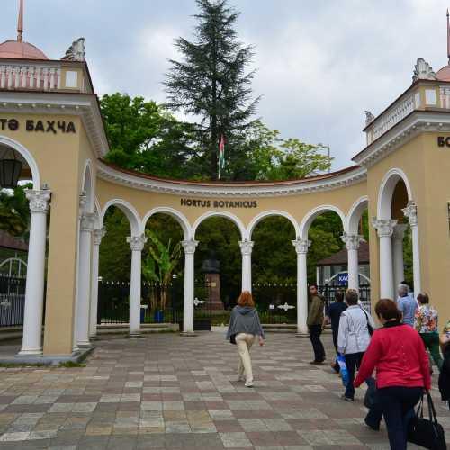 Sokhumi Botanical Garden, Abhazia