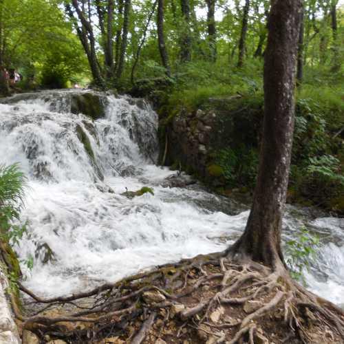 Плитвицкие озера находятся в горах на различной высоте и перетекают друг в друга бурными ручьями и водопадами.
