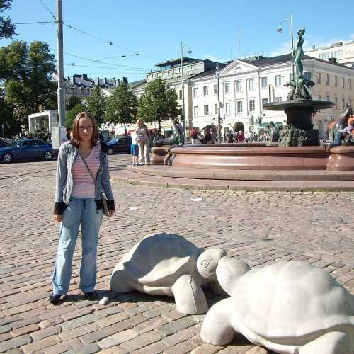 Вот таких черепашек встретили в Хельсинки