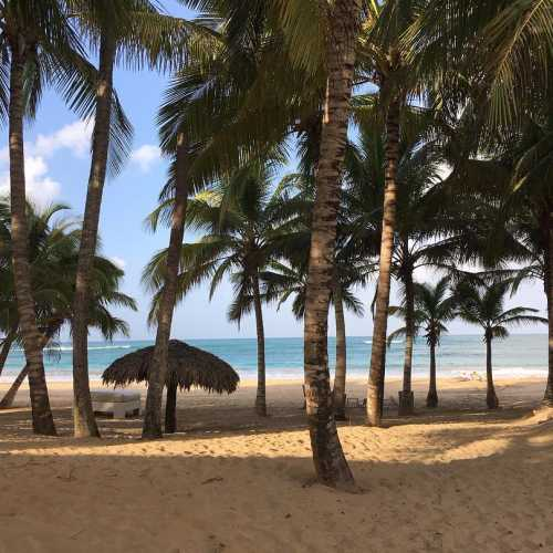 Playa Sivory, Dominican Republic