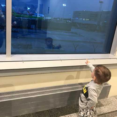 аэропорт Домодедово, 2019