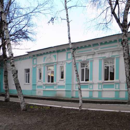 Дом Воюцкого, Russia